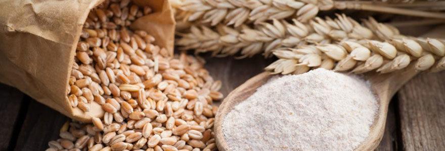 Vendre ses céréales dans un négoce